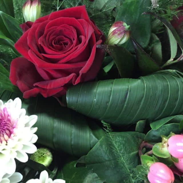 Ausschnitt aus einem Blumenstrauß mit roter Rose und irgendwas weißem (ich kenne die Blumen nicht, sieht aber fluffig aus^^)